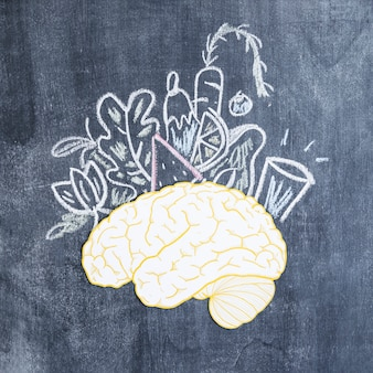 Mixed drawn vegetables over the paper cutout brain on chalkboard