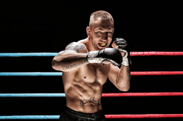 Mixed martial artist posing in boxing ring. concept of mma, thai boxing, classic boxing. mixed media