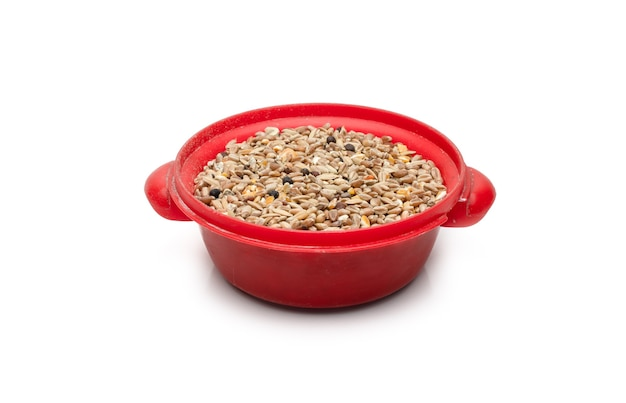 격리된 흰색 배경에 있는 작은 빨간 장난감 그릇에 비둘기 음식이나 다양한 씨앗을 섞는다