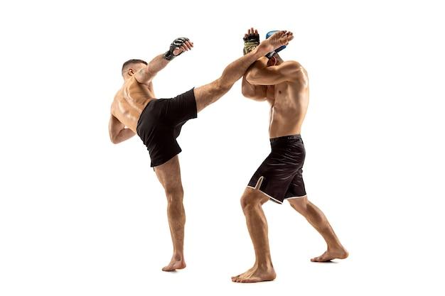 Mma 두 명의 전문 fightesr 펀치 또는 권투 흰색 스튜디오 배경에 고립