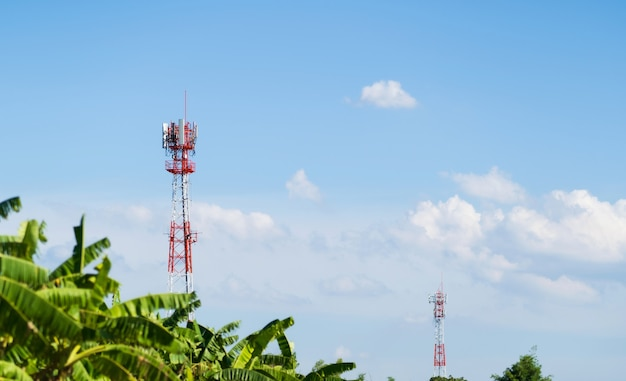 Mobile network cellular communication tower over forested against the blue sky background