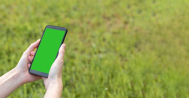 Mobile phone mock up with empty green screen in female hand over green lawn in summer banner with co...
