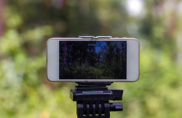 A mobile phone mounted on a tripod capturing image of natural forest, selected focus.