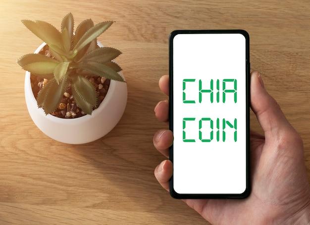 나무 책상 위에 냄비에 남성 손과 녹색 집 식물에서 모의를위한 휴대 전화 화면. 스마트 폰 모형의 앱.