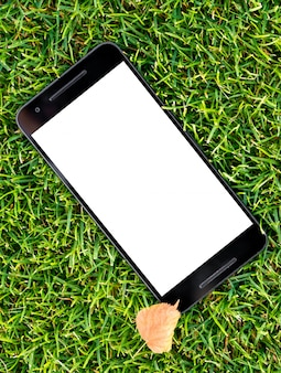 Mobile smart phone mockup with white screen on green grass background and autumn yellow le