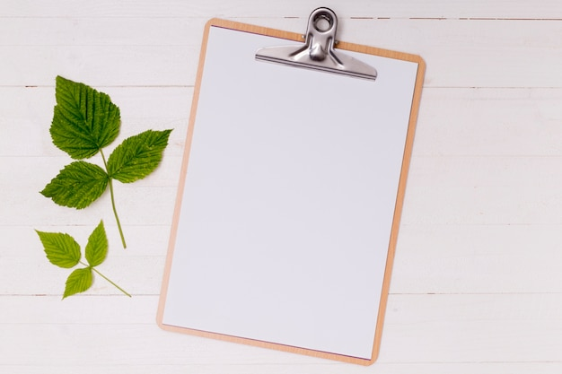 Mock-up clipboard with green leaves