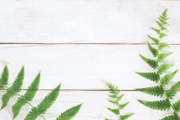 Mock up, fern leaf on white wooden plank background, minimalist