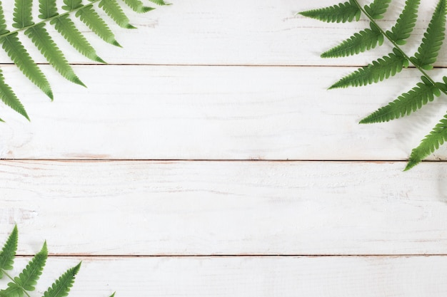 Mock up, fern leaf on white wooden plank background, minimalist