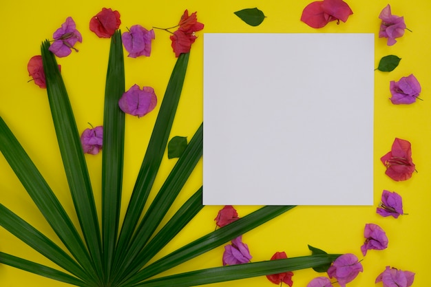 Mock-up white paper with space for text or picture on yellow background and tropical palm leaf and flower.