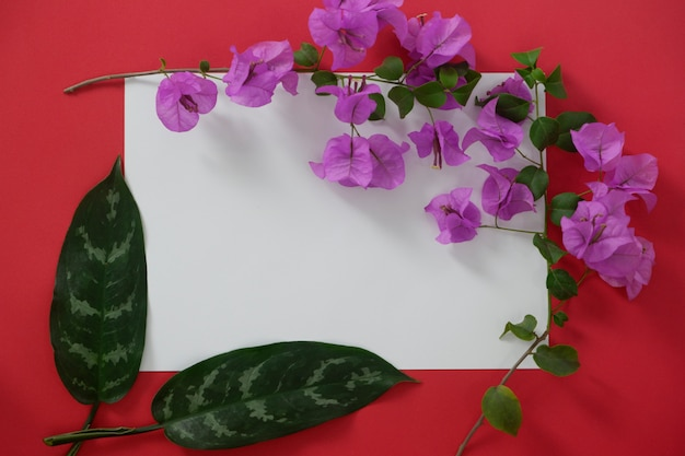 Mock-up white paper with space for text on red background and tropical leaves and flowers.