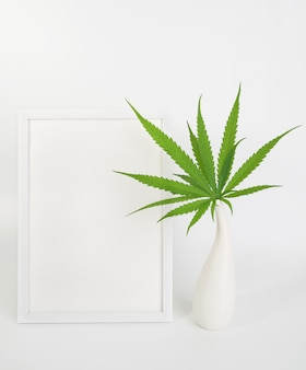 Mock up white picture frame and fresh cannabis marijuana green leaves in modern ceramic vase  on white background