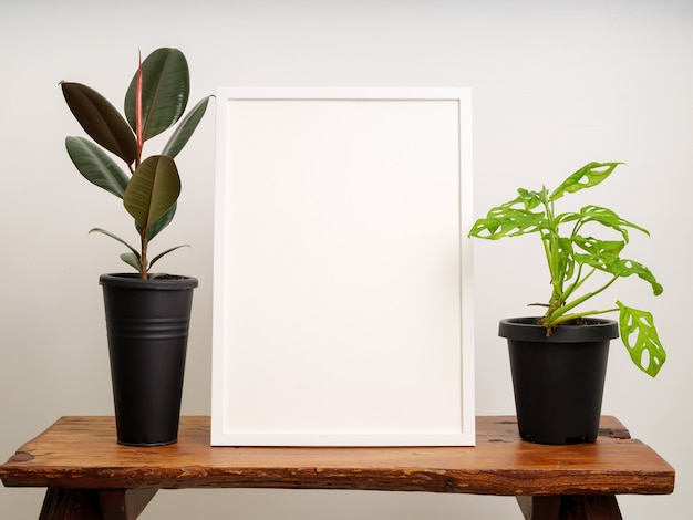 Макет белой деревянной рамки плаката с каучуковым растением (ficus elastica) и monstera obliqua в черном контейнере на деревянном стуле