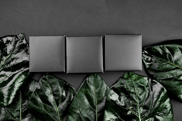 Mockup for black gift box a dark background with green leaves on the sides, creative layout, flat lay, nature concept, space for text, top view