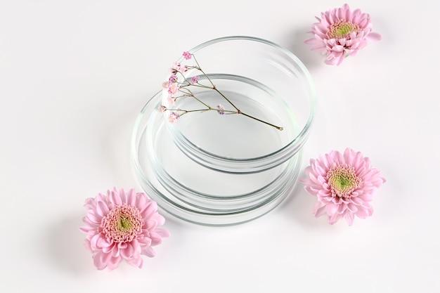 有機化粧品または代替医療のモックアップ。白地にピンクの菊のペトリ皿。
