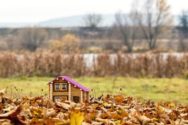 가을 강가의 집 모형. 자연의 주택