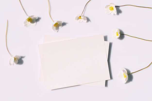 회색 배경 위에 단단한 그림자가 있는 프레젠테이션 초대 빈 종이와 흰색 꽃을 위한 모형 포스터 전단지