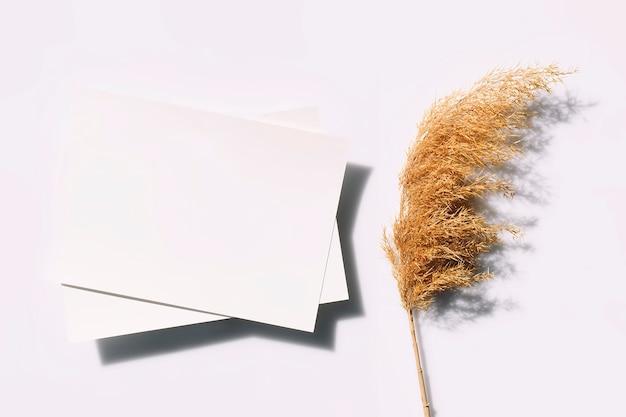 Макет плаката или флаера для презентации белые листы бумаги с тростником и жесткими тенями на сером фоне вид сверху