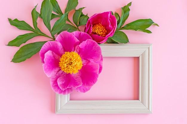 ピンクの背景にピンクの牡丹とモックアップの正方形の白いフレーム。