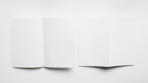 Mockup of two blank brochures