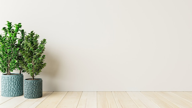 Mockup white wall empty interior room with plants on a floor.3d rendering