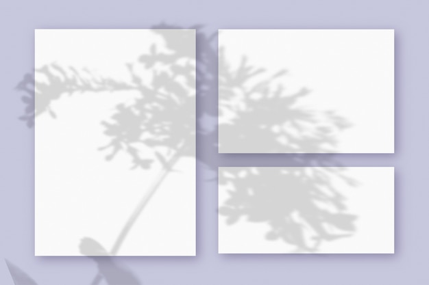 Mockup with plant shadows superimposed on 3 horizontal and vertical sheet of textured white paper on a violet table background.