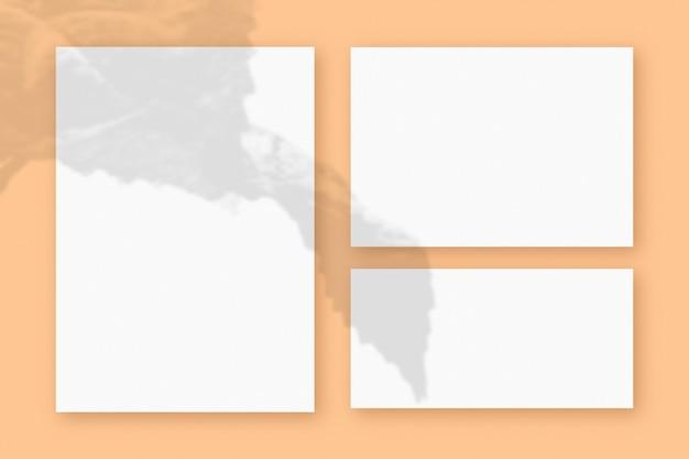 베이지색 테이블 배경에 질감이 있는 흰색 종이 3장에 식물 그림자가 겹쳐진 모형입니다.