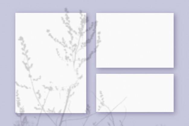 紫のテーブルの背景にテクスチャの白い紙の3つの水平および垂直シートに重ねられた植物の影のモックアップ。