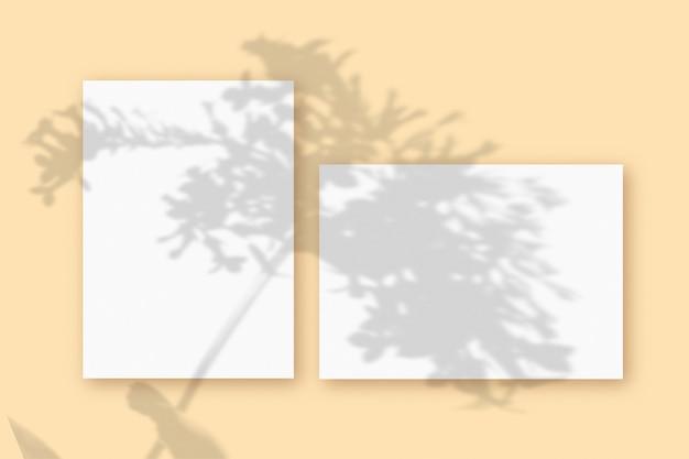 베이지색 테이블 배경에 질감이 있는 흰색 종이의 수평 및 수직 시트에 식물 그림자가 겹쳐진 모형입니다.