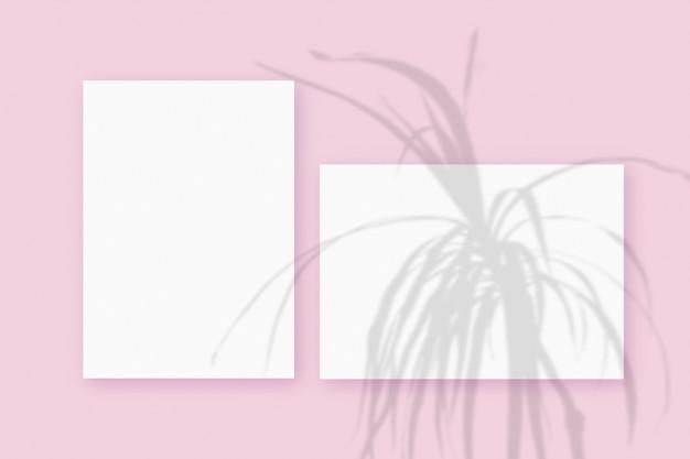 ピンクのテーブルの背景にテクスチャの白い紙の水平方向と垂直方向のシートに重ねられた植物の影のモックアップ。