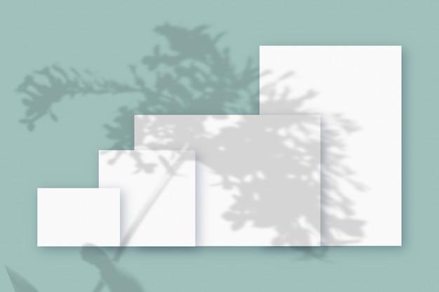 청록색 테이블 배경에 질감이 있는 흰색 종이의 여러 수평 및 수직 시트에 겹쳐진 식물 그림자가 있는 모형.