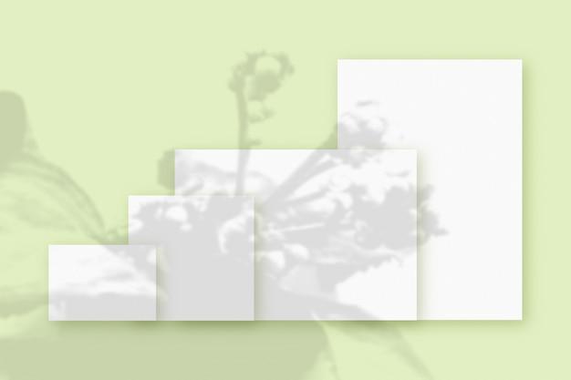 緑のテーブルの背景にテクスチャの白い紙のいくつかの水平および垂直シートに重ねられた植物の影のモックアップ。