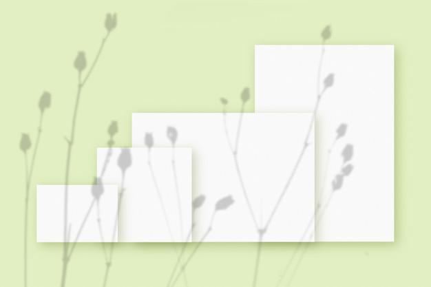녹색 테이블 배경에 질감 있는 흰색 종이의 여러 수평 및 수직 시트에 겹쳐진 식물 그림자가 있는 모형.