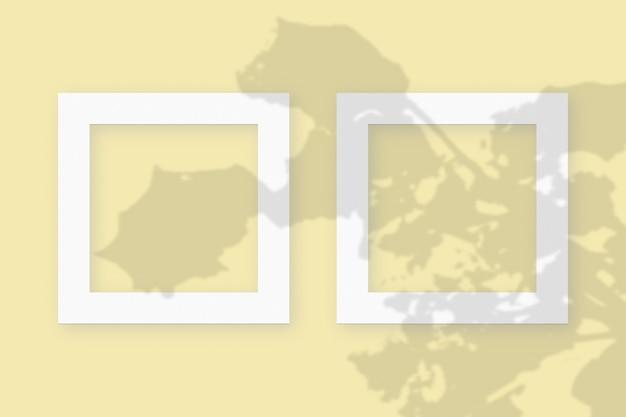 노란색 테이블 배경에 질감이 있는 흰색 종이의 2개 정사각형 프레임에 야채 그림자가 겹쳐진 모형입니다.