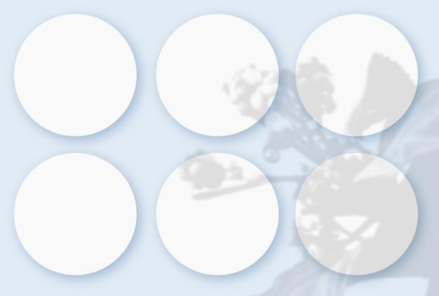 파란색 테이블 배경에 질감이 있는 흰색 종이 6장에 야채 그림자가 겹쳐진 모형