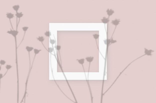 분홍색 테이블 배경에 질감이 있는 흰색 종이의 사각형 프레임에 야채 그림자가 겹쳐진 모형입니다.
