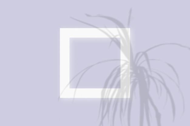 紫のテーブルの背景にテクスチャの白い紙の正方形のフレームに野菜の影を重ねたモックアップ