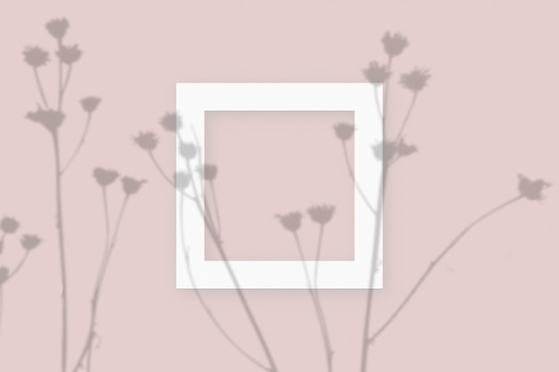 Mockup with vegetable shadows superimposed on square frame of textured white paper on a pink table background.