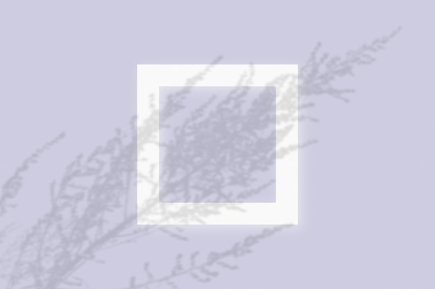 Mockup with vegetable shadows superimposed on square frame of textured white paper on a violet table background.