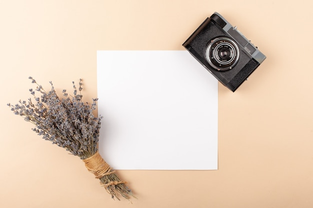Mocup on a beige background. beautiful plants, empty white space for text.