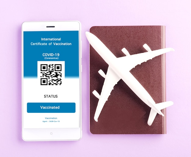 Model airplane passport and immunity pass are arranged application on smartphone