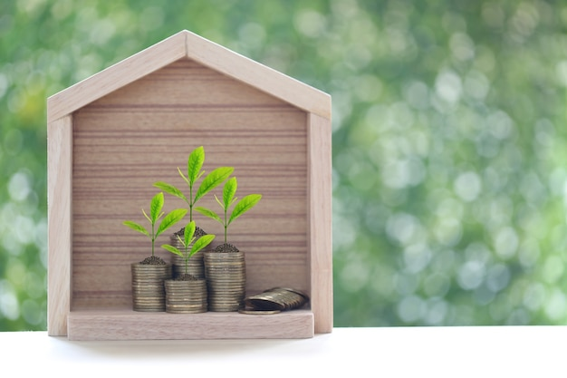 Model house with trees growing on stack of coins money with green background