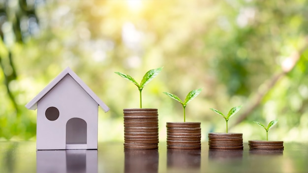 동전 더미 위에 모델 하우스와 나무가 자라고 있습니다. 신용 개념 부동산 사다리 금융 모기지 주거 부동산