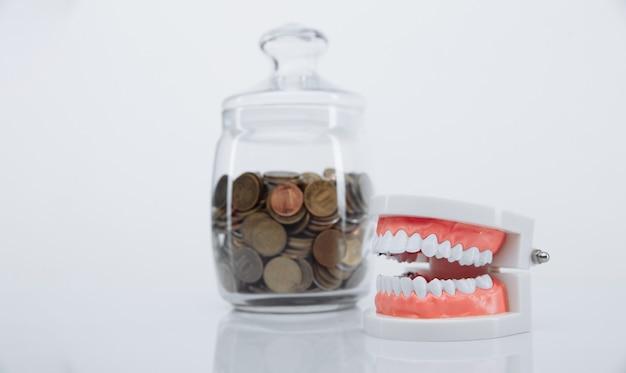 Модель челюсти и банка с монетами. деньги и концепция стоматолога
