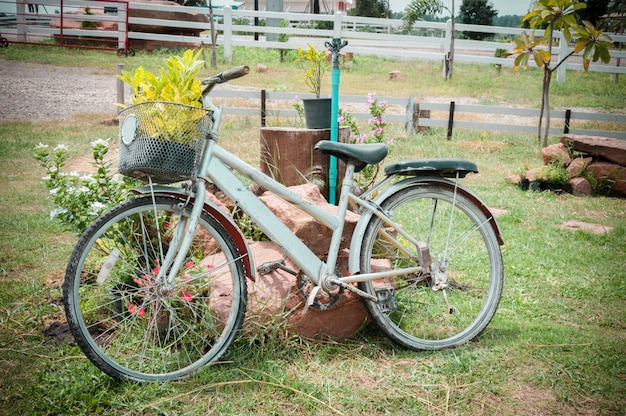 Model of an old bicycle equipped with basket of plants