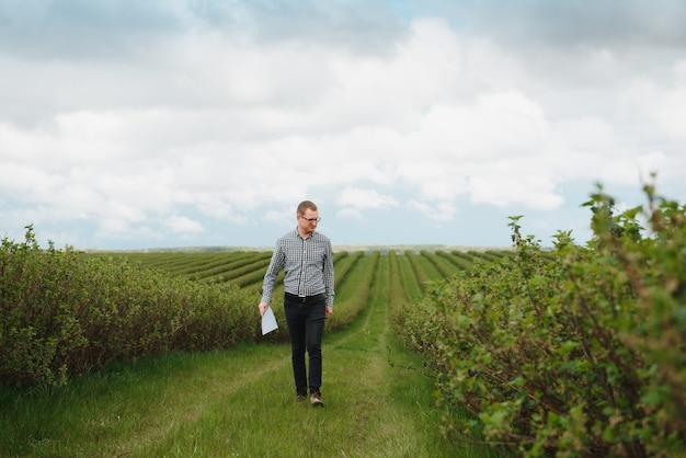 屋外でスグリ畑に取り組んでいるフォルダーを持つ現代の農学者