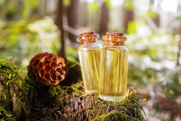 Modern apothecary. natural spruce oil on a wooden surface in the forest among firs.