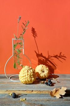 Modern autumn arrangement with yellow pumpkins, fall oak leaves on wooden table with orange wall