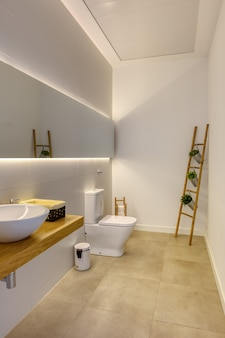 Modern bathroom of milimalist design with ceramic washbasin suspended on solid oak wood table. reed staircase with decorative planters.