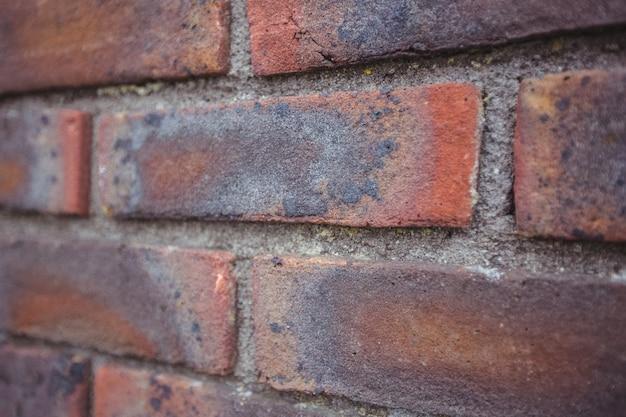 Moderna muro di fondo