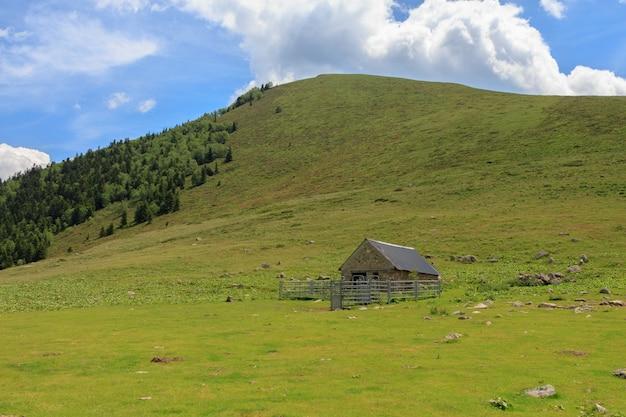 녹색 산으로 소를 키울 수 있는 현대적인 오두막